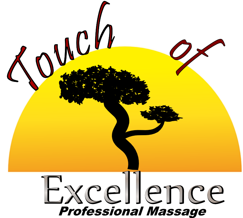Touch of Excellence Logo
